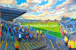 Moss rose on matchday print